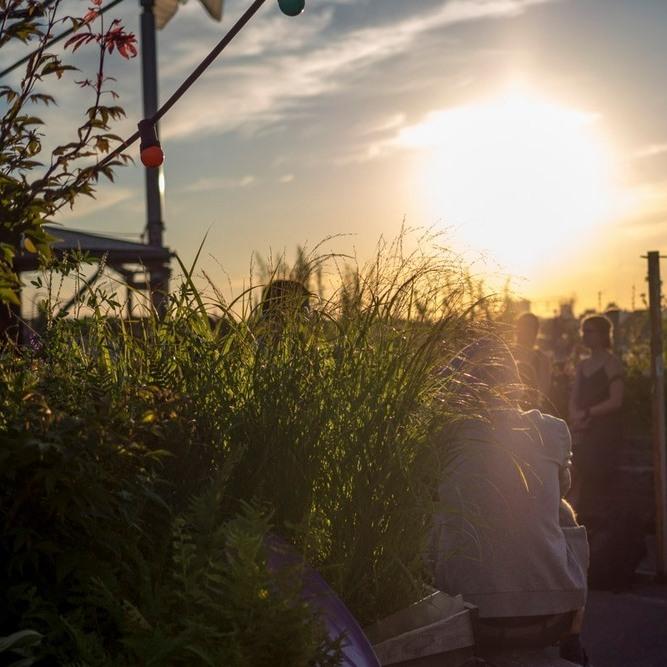 Post-Lockdown Life: Berlin's Best Beer Gardens and Outdoor Drinking Spots